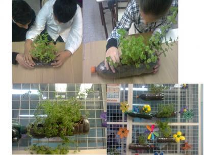 Jardin colgante en la escuela escuela n 2 d e 19 for Jardines pequenos para escuelas