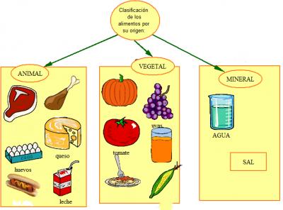 Resultado de imagen de origen de los alimentos primaria